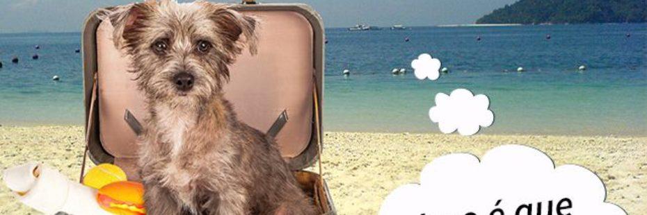 imagem-Hotel-pet-friendly-florianopolis
