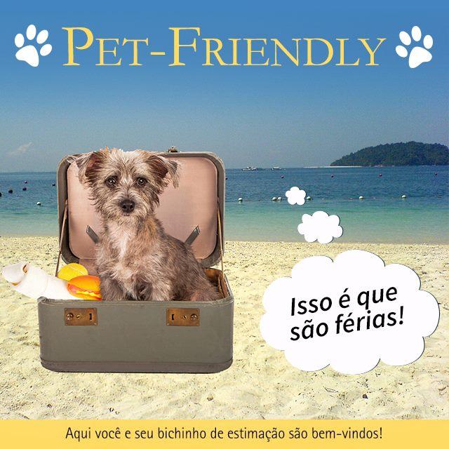 Vista da praia de Jurerê com um cachorro de colo dentro de uma mala sobre a faixa de areia com um balão de pensamento que lê Isso é que são férias!